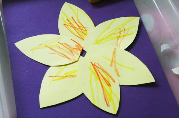 Spring daffodils -2
